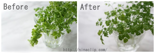 chervil-before-after